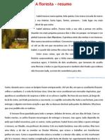 Floresta Resumo Sophia de Mello Breyner