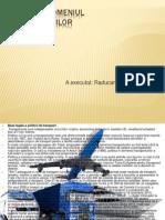 politica in domeniul transportului Raducanu Diana con1202.pptx