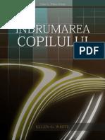 ÎC  (CG).pdf