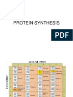 Protein Synthesis3