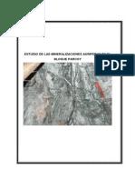 Estudio de Mineralizacion, Bloque Parcoy, CRendon