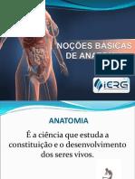 Aula Noções de Anatomia, fisiologia e sinais vitais