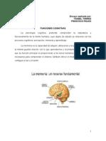 Ensayo Sobre Funciones Cognitivas