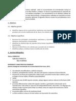Informe 1 - Porífera y Cnidaria