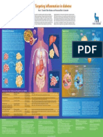 Inflammation Poster