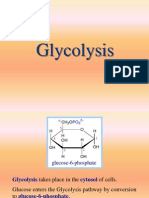 Curs 12 Glycolysis