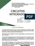 Presentacion de Lo Cicuitos y Microchip