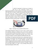 Relatório Centrifugação e Determinação do teor de gordura