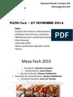 Pleno Fech – 27 Noviembre 2014