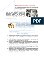 Tema Importancia de La Plataforma