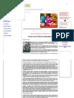 Yerba Dulce - Cultivo de Stevia Rebaudiana