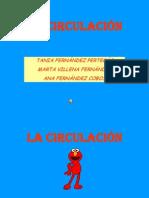 Multimedia Para Entregar