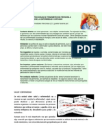 LAS ENFERMEDADES INFECCIOSAS SE TRANSMITEN DE PERSONA A PERSONA.docx