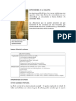 Deformidades en Cifosis