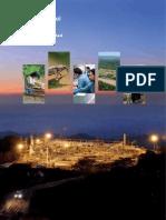 Informe PlusPetrol 2012