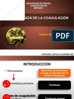 Cascada de La Coagulacic3b3n Paulina Quintero