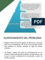 PROYECTO DE ZARZAMORA.pptx