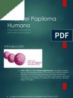 Virus Del Papiloma Humano CITO