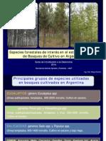 Especies Forestales2014 Color