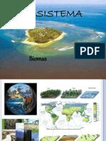 Ecosistema BIOMAS Final