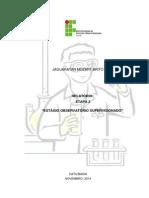 Relatório de  estagío  observatorio.docx