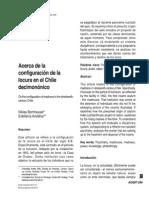Acerca de la configuración de la locura en el Chile decimonónico. Niklas Borhauser- Estefanía Andaur