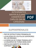 Patología de las grandulas suprarrenales
