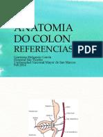 Anatomía de Colon2