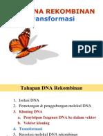 Pengantar Bioteknologi-7 DNA Rekombinan