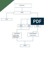 Mapa Conceptual etica nicomaquia