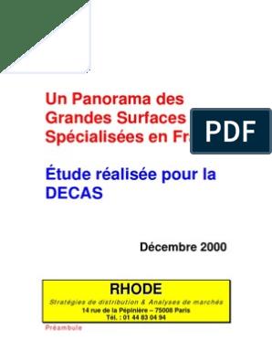 Panorama Des Grandes Surface Spécialisé En France 2000