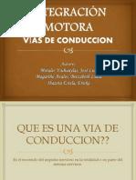 Integracion Motora,Tractos Desccendentes