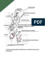 Aeroterma_Schema.pdf