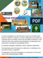 Areas Protegidas 2014