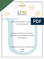 ProductoFinal Antropologia 100007A 505