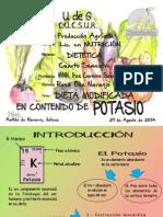 expo potasio.pdf