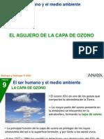 P_3_195_ozono