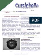 cursichella46.pdf