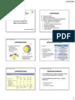 Preparaduria de Metabolismo de Triacilgliceridos-Imprimible 2[1]