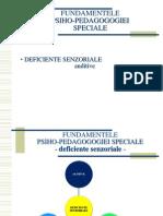 Defic SENZ2