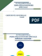 Defic SENZ4