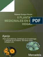 8 Plantas medicinales en el hogar