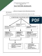 4- Arquitectura.pdf