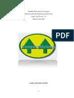 INFORME - COOPERATIVISMO.docx