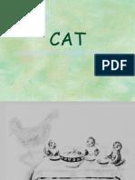CAT a vs H (Copia Conflictiva de Psicologos Chilenos FB 2012-05-08)