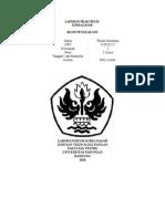 RESIN PENUKAR ION.doc