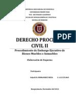 EMBARGO EJECUTIVO DE BIENES MUEBLES E INMUEBLES.- Solyeli R. HERNANDEZ MEZA
