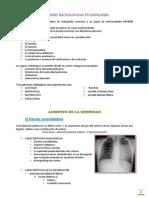 patrones radiograficos.