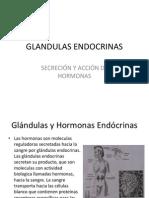 GLANDULAS ENDOCRINAS