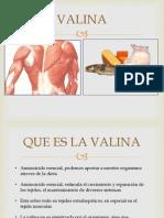 EXPOSICION VALINA LEUCINA.pptx